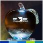 MRC annonce les lauréats de ses Prix pour l'année 2018-2019